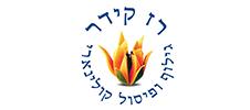 קידום אתרים בירושלים - רז קידר